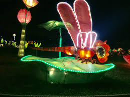 Stone Zoo Lights by Chinese Lantern Festival At Sunset Cove Amphitheater Tickets