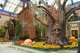 Botanical Gardens In Las Vegas Photos Of Kid Friendly Attraction Bellagio Conservatory