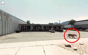 Street View Google Map Top 100 Strange Things Caught On Google Street View 2015
