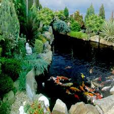 Garden Pond Ideas Top 10 Garden Aquarium And Pond Ideas To Decorate Your Backyard