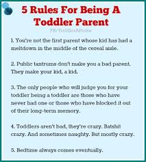 Funny Toddler Memes - toddlers are a holes five rules for being a toddler parent funny