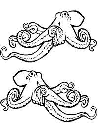 realistic octopus sea animals u2013 fee coloring page realistic