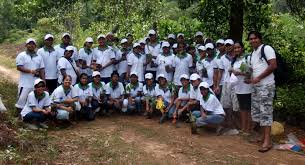 standard chartered bank plants 10 000 trees in sri lanka with patt