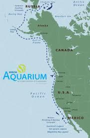 Gulf Of Alaska Map Thar She Blows Birch Aquarium Launches 13th Season Of Whale Watching