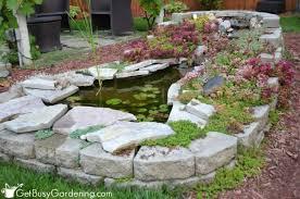 Pond In Backyard by Winterizing Your Backyard Garden Pond