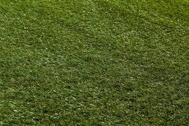 treviso artificial turf pre residential deep olive 5 u0027x10 u0027