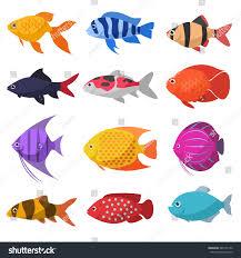 isolated river fish set freshwater aquarium stock vector 380151142