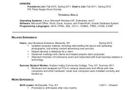 Additional Information On Resume Resume Writing Additional Information And References