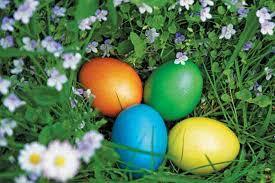 easter egg hunt eggs an easter egg hunt prank community capper 39 s