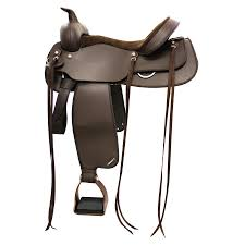spokane tack trunk the very finest for you and your horse