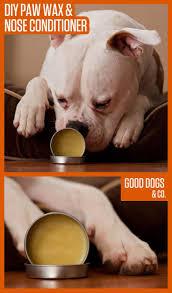electric fireplace u2026 pinteres u2026 88 best winter howliday tips images on pinterest diy dog dog