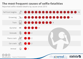 chart the most frequent causes of selfie fatalities statista