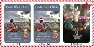 costa rica chica u0027s favorite things 2014 christmas gift guide