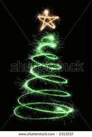 outside pine tree lit up for christmas christmas pinterest