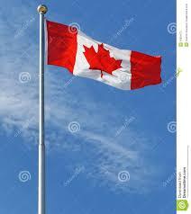 the maple leaf canada u0027s national flag stock photography image
