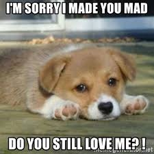 Love Me Meme - i m sorry i made you mad do you still love me sad puppy face