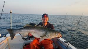 maiden voyage to cape cod on my first boat 40 inch striped bass