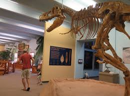 the dinosaur museum utah best dinosaur images 2018