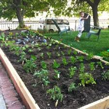vegetable garden planner free beautiful planning a vegetable