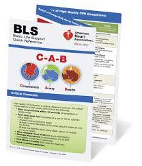 Aha Ive English Bls Provider Manual Worldpoint