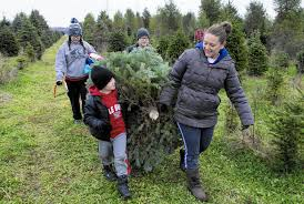 families keep christmas tree tradition memories alive post tribune
