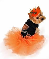 Halloween Costume Large Dogs Orange Pumpkin Halloween Dog Costume Small Large Dog