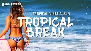 tropical photo album tropical vibes lord reverb tropical tropical vibes