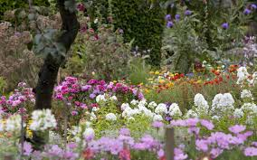 pictures of beautiful gardens with flowers beautiful flower garden background wallpaper