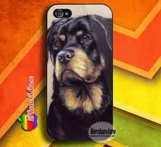 110 best rottweiler stuff images on rottweilers