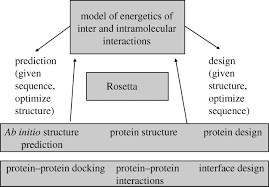 prediction and design of macromolecular structures and