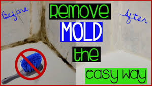 best bathroom cleaner for mold and mildew clean shower bathroom grout without scrubbing the lazy way to