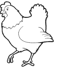 coloring page of a chicken kids n fun com 20 coloring pages of chicken