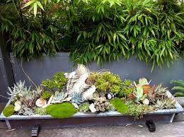 Small Tropical Garden Ideas Modern Tropical Courtyard Tropical Garden Vancouver By