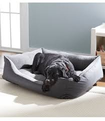 Ll Bean Dog Bed Everydog Couch Bed Free Shipping At L L Bean