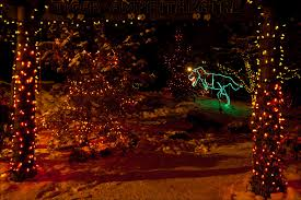 Zoo Lights Prices by Christmas Lights Christopher Martin Photography