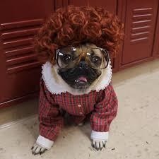 stranger things doug the pug dog parody barb eleven