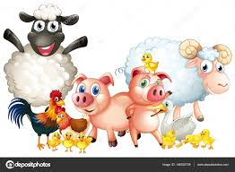 many types of farm animals u2014 stock vector interactimages 146320729