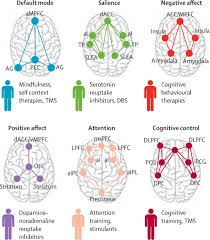 precision psychiatry a neural circuit taxonomy for depression and