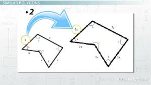 similar polygons practice problems video u0026 lesson transcript