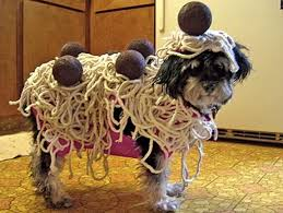 Halloween Costumes For Dogs Halloween Costumes For Dogs Archives Blue Mountain Blog