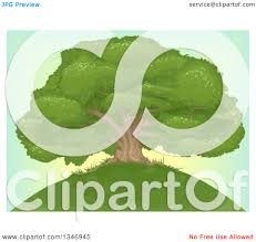 clipart of a beautiful mature oak tree on top of a hill over a