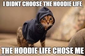 Hoodie Meme - hoody cat memes imgflip
