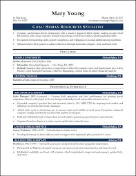 Resume Profile Summary Sample resume summary examples entry level cleaner resume