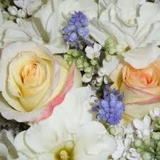 sacramento florist royal florist 136 photos 28 reviews florists 2221 10th st