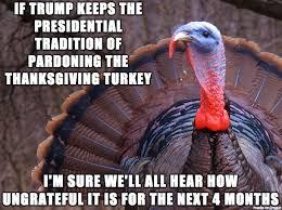 Turkey Memes - confession turkey meme on imgur