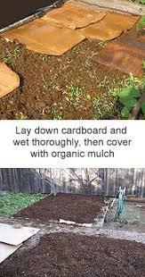 258 best gardening landscaping images on pinterest