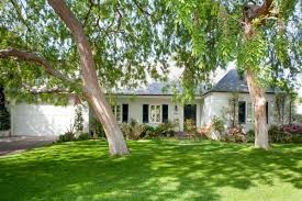 why plant trees in your yard tree ottawa
