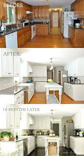 Spray Paint For Kitchen Cabinets Painting Old Kitchen Cabinets Before And After Black Painted