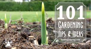 Garden Tips And Ideas 101 Vegetable Gardening Tips Ideas With A Prep