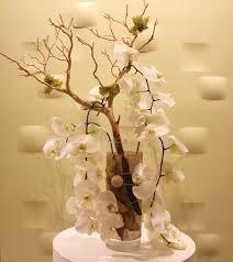 manzanita branches manzanita branches in los angeles ca downtown flowers